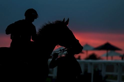Epsom summer nights racing sunset with horse
